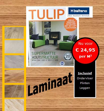 aanbieding balterio website